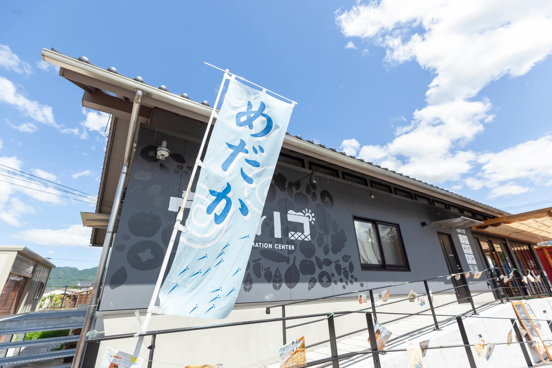 夏休みワークショップフェスティバル2019〜めだか編〜